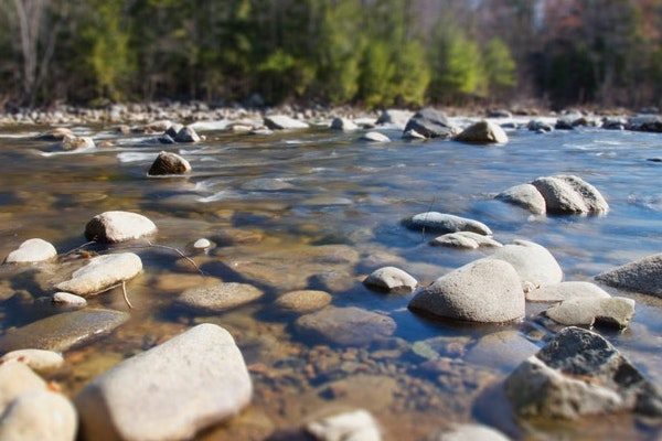 Lessons from Tubing on the New River